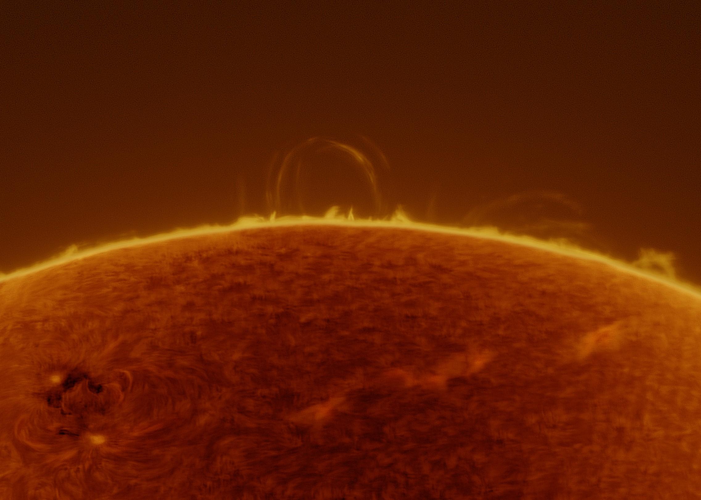 51 słoneczna pętla i rejon aktywny AR1987 w paśmie H alfa 2014-02-23 fot. Karol Wenerski