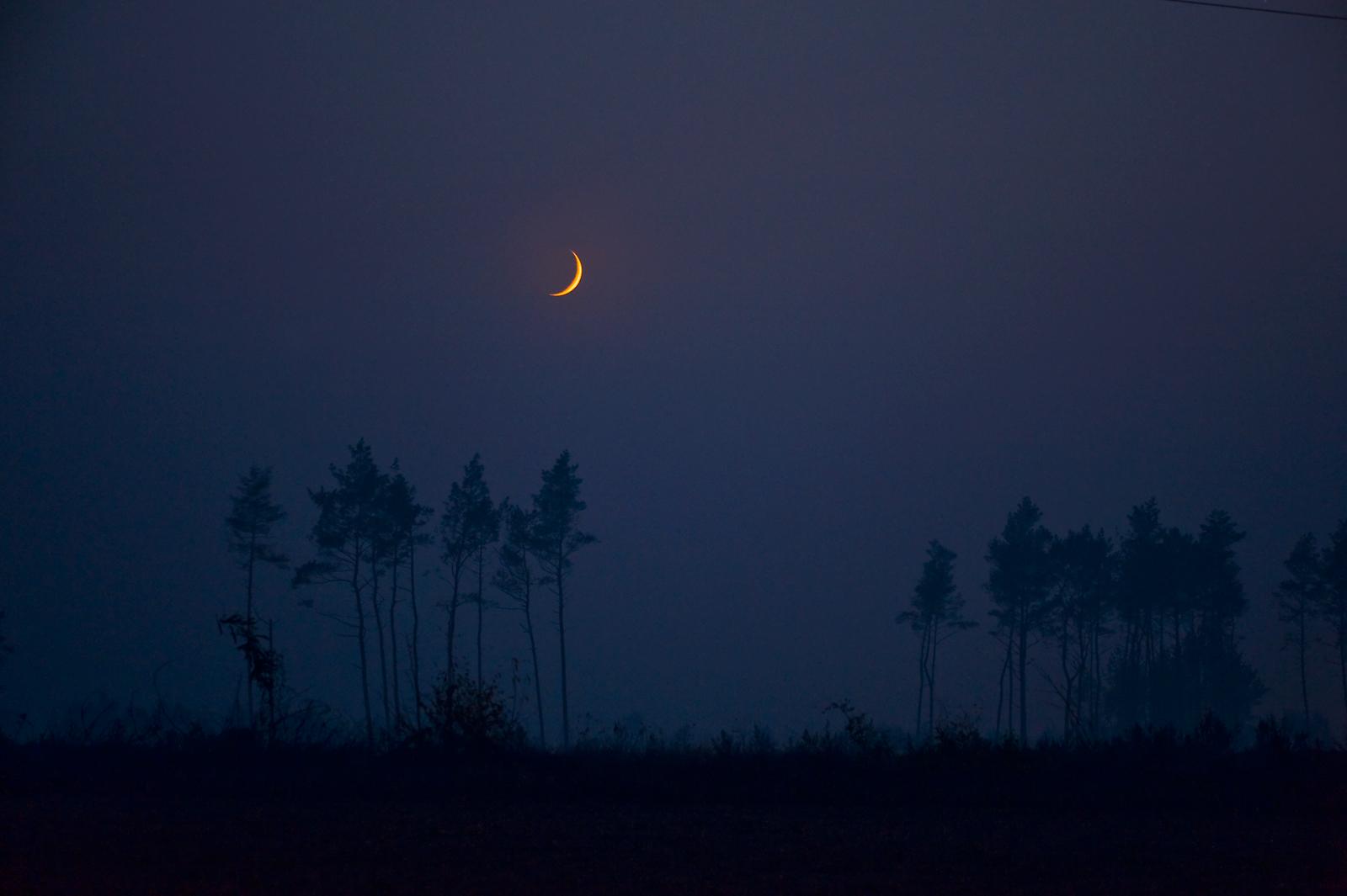 fot. Marek Nikodem